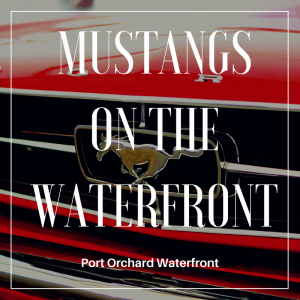 Mustangs On The Waterfront